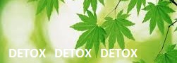 The Little China Company - Green Foliage Detox